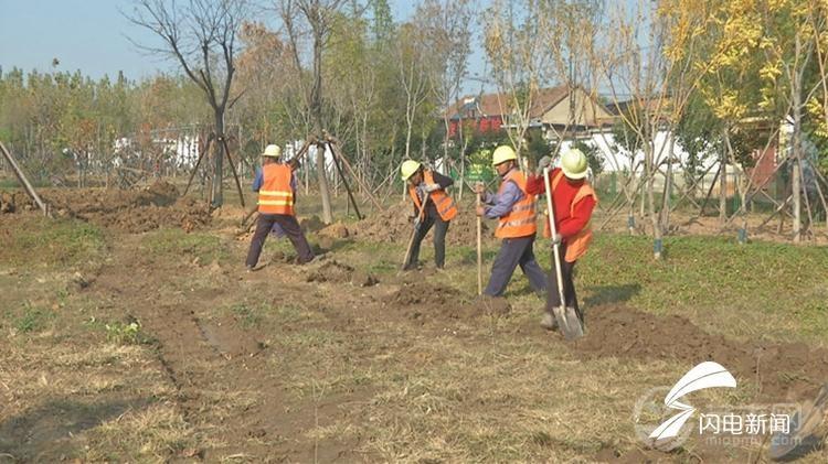 滨州邹平:加强绿化栽植养护 提升园林景观效果